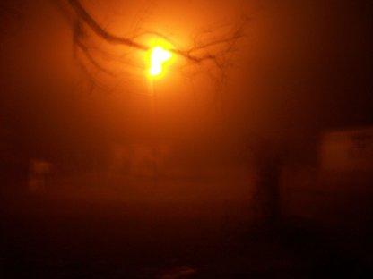 670061__dense-early-morning-fog_p