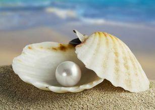 perla-preciosa